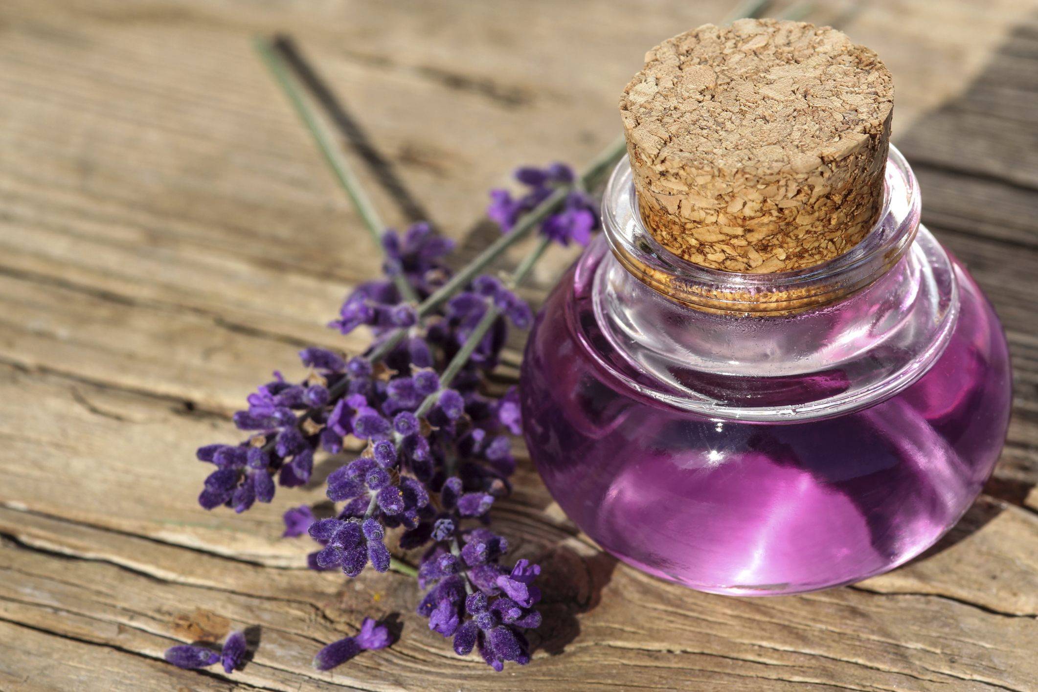 Lavender oil is an essential oil obtained by distillation from the flower spikes of certain species of lavender. The health benefits of lavender essential oil include its ability to eliminate nervous tension, relieve pain, disinfect the scalp and skin, enhance blood circulation and treat respiratory problems.
