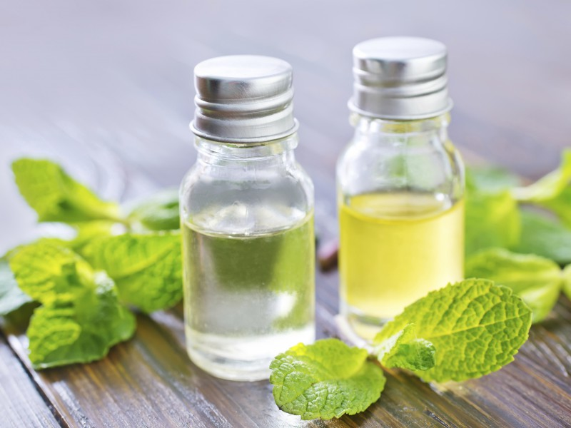 Peppermint oil is rapidly becoming one of the most efficient and useful essential oils for treating the scalp and improving hair growth.