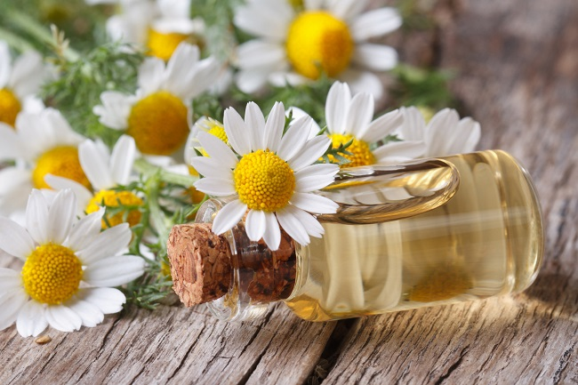 Chamomile oil adds shine and softness to hair, and soothes the scalp.